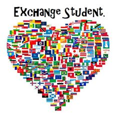 Stagiile Ligii Studenților – Practică și Cercetare