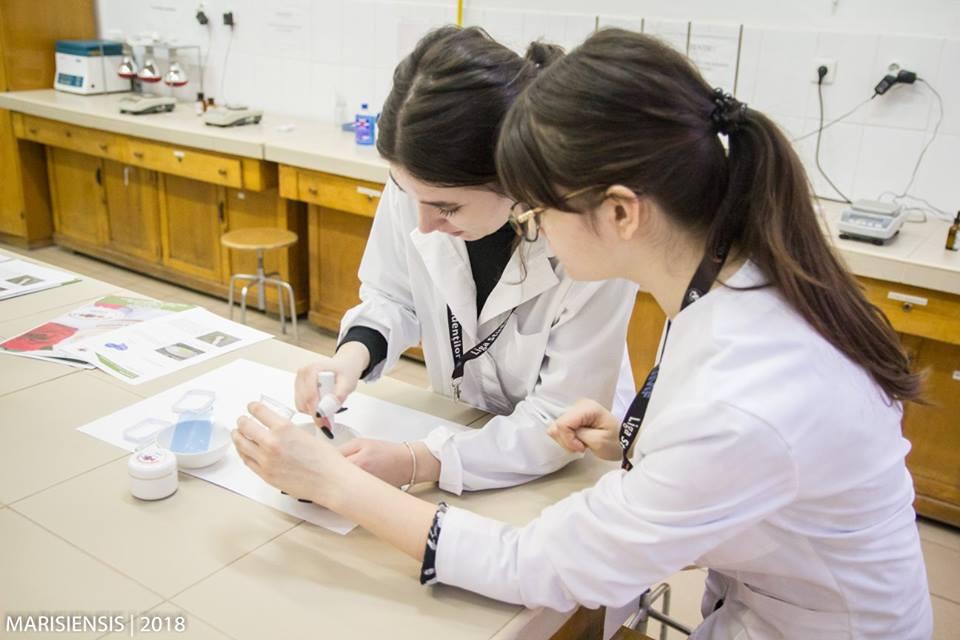 Mai multe burse pentru studenții UMFST Târgu Mureș